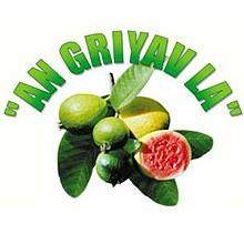 img_listing-an-griav-la